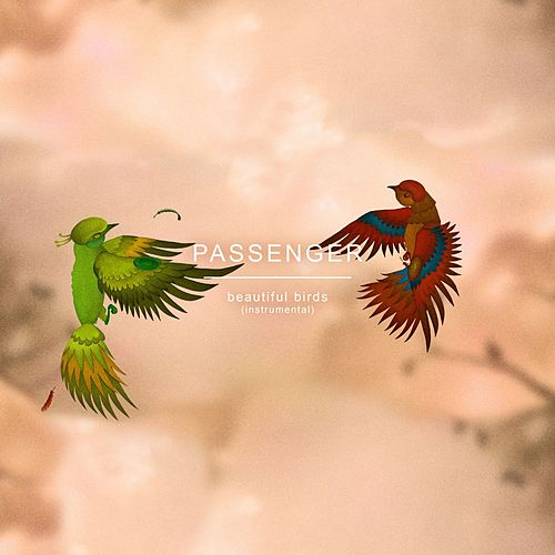 Beautiful Birds (Instrumental) by Passenger