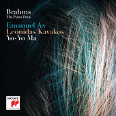 Piano Trio No. 1 in B Major, Op. 8/Scherzo: Allegro molto by Leonidas Kavakos