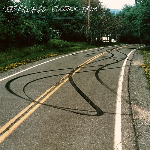Thrown Over The Wall by Lee Ranaldo