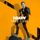 True Love (Cotone Remix) von Lions Head