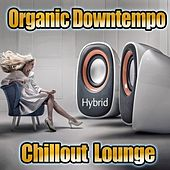 Hybrid Organic Downtempo Chillout Lounge by Various Artists