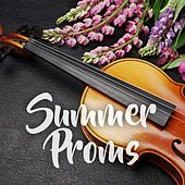 Summer Proms by Various Artists
