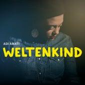 Weltenkind de Adi Amati
