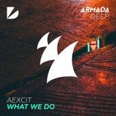 What We Do von Aexcit
