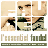 L'essentiel Faudel by Various Artists