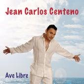 Ave Libre de Jean Carlos Centeno