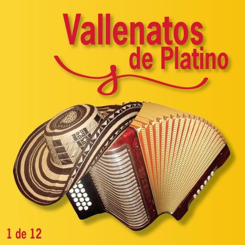 Vallenatos De Platino Vol. 1 by Various Artists