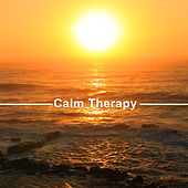Calm Therapy – Peaceful Music to Calm Down, Soft Vibes, Sounds of Sea, Tropical Lounge Music, Sensitive Chill Out von Ibiza Chill Out