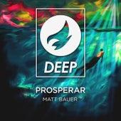 Prosperar by Matt Bauer