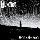 Stella Sapiente by The Lillingtons