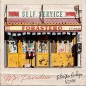 Forastero (Electric Bodega Remix) by Mr. Paradise
