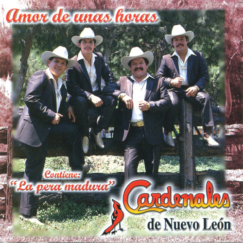 Amor De Unas Horas by Cardenales De Nuevo León