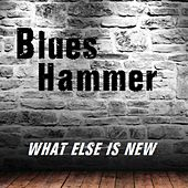 What Else Is New de Blueshammer