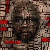 Vokabi-Lari by BIC Tizon dife