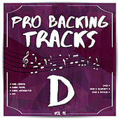 Pro Backing Tracks D, Vol.15 by Pop Music Workshop