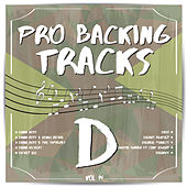 Pro Backing Tracks D, Vol.14 by Pop Music Workshop