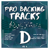 Pro Backing Tracks D, Vol.12 by Pop Music Workshop