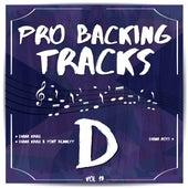 Pro Backing Tracks D, Vol.13 by Pop Music Workshop