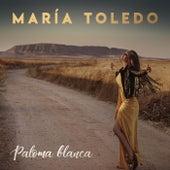 Paloma blanca de Maria Toledo