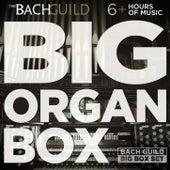 Big Organ Box de Various Artists