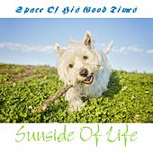 Space of His Good Times de Sunside Of Life