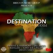 Destination RIddim by Various Artists