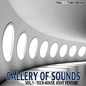 Gallery Of Sounds -Vol.1 - Tech-House Joint Venture by Various Artists
