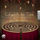 Labyrinth der Töne, Vol. 20 - Deep & Tech-House Music by Various Artists