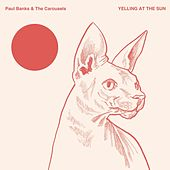 Yelling at the Sun by Paul Banks