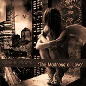 Madness of Love - Single di Valefim Planet