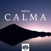 Música Calma con Sonidos Instrumentales para Dormir Profundamente by Calm Music for Studying