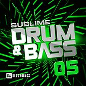 Sublime Drum & Bass, Vol. 05 - EP by Various Artists