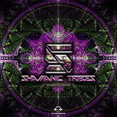Shamanic Tribes Vol. 5, Compiled by Modul8 by Various Artists