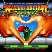 Rehabb Rhythm by Various Artists