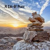 A Life Of Peace by Echoes of Nature