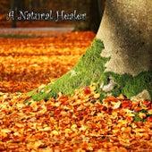 A Natural Healer von Best Relaxing SPA Music