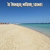 78 Tranquil Natural Sounds by Ocean Sounds Collection (1)