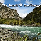 The Sounds Of Sanctuary by Ocean Sounds Collection (1)