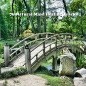 76 Natural Mind Healing Tracks de Best Relaxing SPA Music
