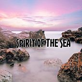 Spirit Of The Sea by Yoga Music