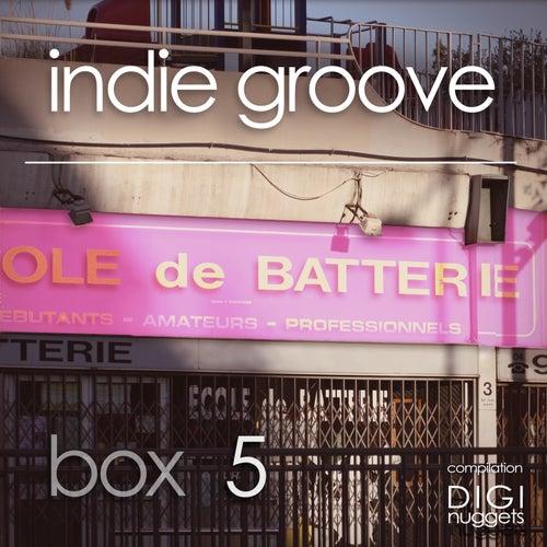 Indie Groove Box, Vol. 5 by Various Artists