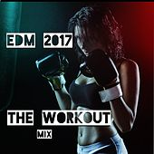 EDM 2017: The Workout Mix von Various Artists