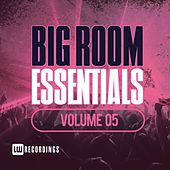 Big Room Essentials, Vol. 05 - EP by Various Artists