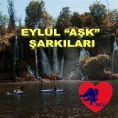 Eylül ''Aşk'' Şarkıları by Various Artists