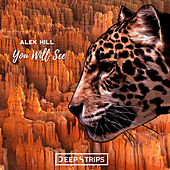 You Will See by Alex Hill
