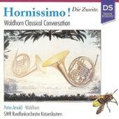 Heinichen, Rosetti, Widerkehr & Danzi: Hornissimo! - Die Zweite (Waldhorn Classical Conversation) by Peter Arnold