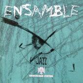 Ensamble von Fabián Díaz