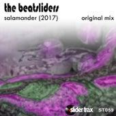 Salamander (2017) by The Beatsliders