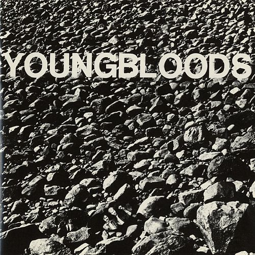 Rock Festival by The Youngbloods
