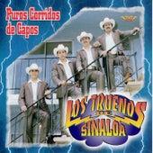 Puros Corridos de Capos de Los Truenos De Sinaloa